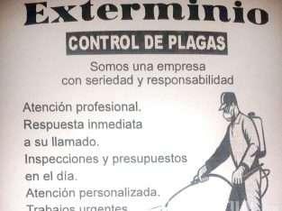 Exterminio Control De Plagas
